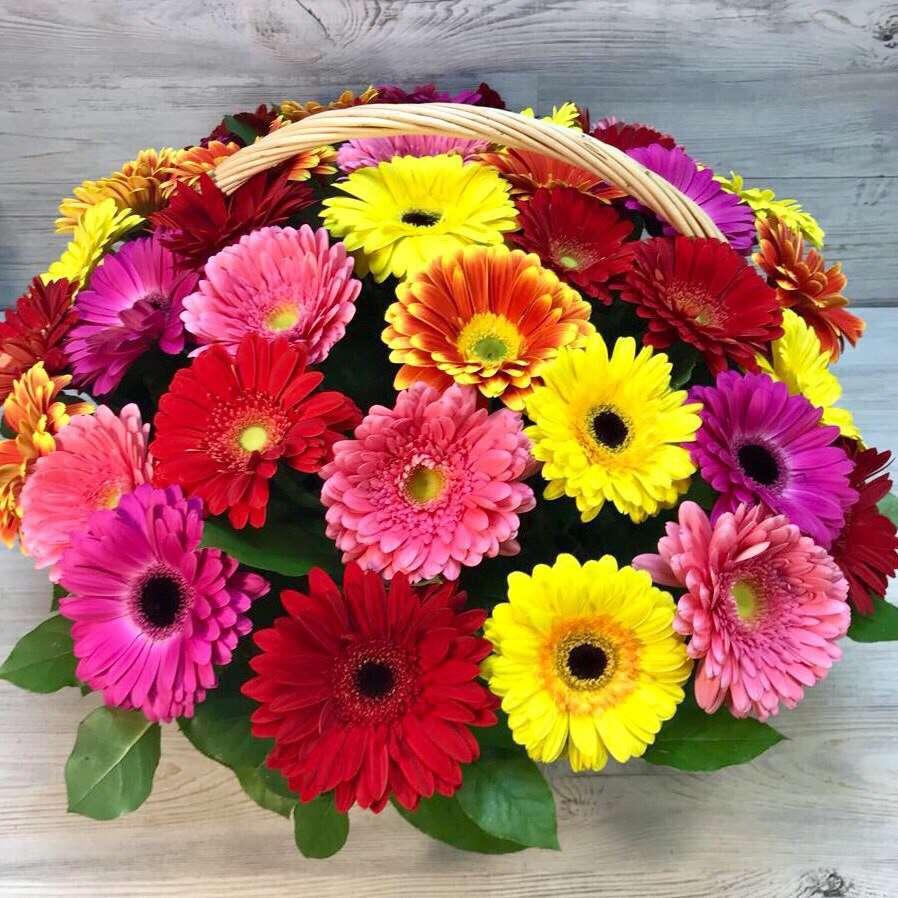 Открытки с днем рождения с цветами герберами