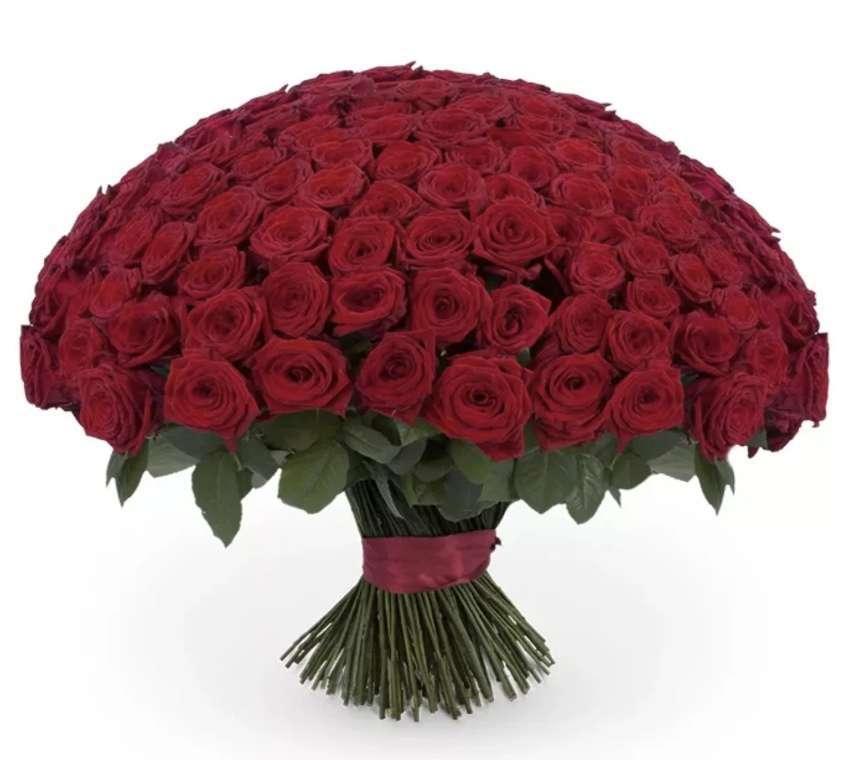 картинка сто рублей и одна роза мягкая
