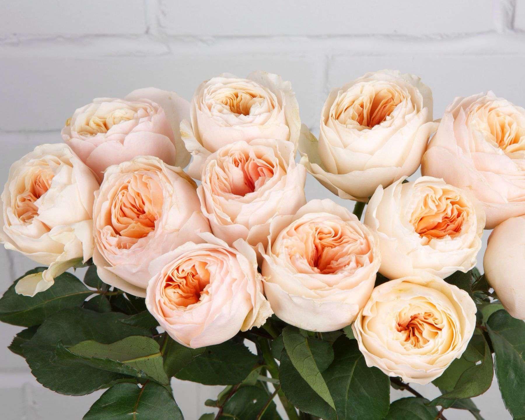 Букеты для, букет английских роз купить спб