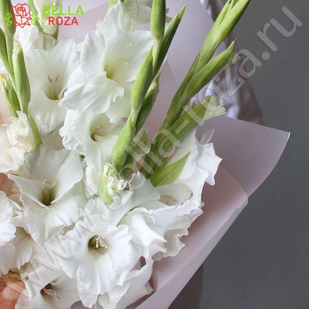 Розы черные цветы купить заказать дешевые комнатные цветы почтой через интернет