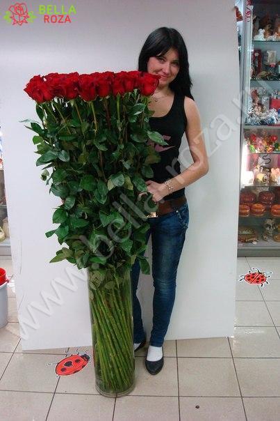 Розы 150 см купить
